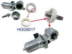 HGG8017-01